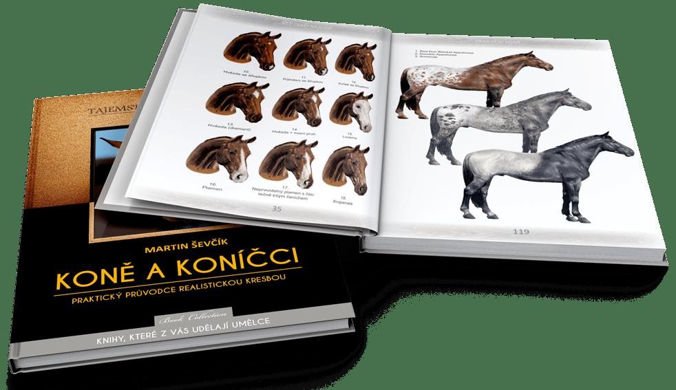 Kniha Kterou Budete Potrebovat K Ovladnuti Realisticke Kresby Kone